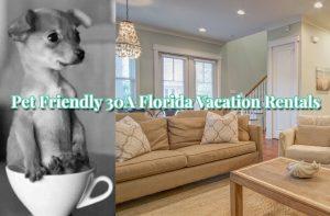 Top 10 Pet Friendly 30A Florida Rentals