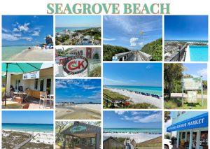 Seagrove Beach South Walton Community