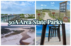 Explore South Walton's State Parks